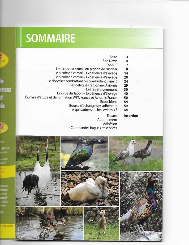 AVIORNIS FRANCE. - Page 5 Aviorn10