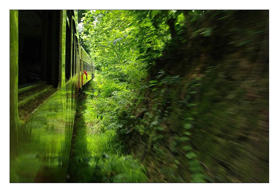 Photos de l'année 2012 (vote jusqu'au 06/02 - 23h59) - Page 2 Train_10