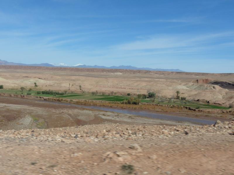 voyage au Maroc P1050915