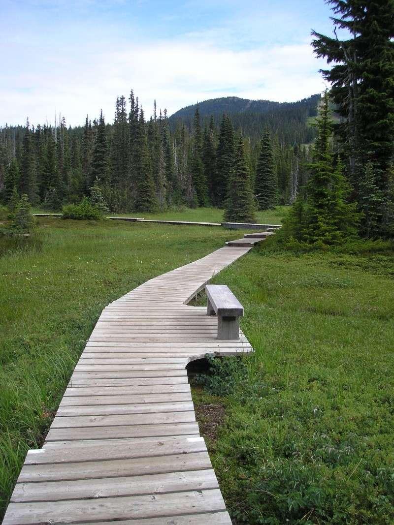 Les parcs naturels en Canada S.O.S P7280110