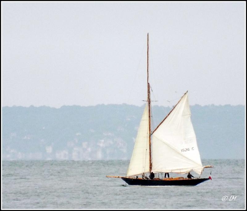 [ Marine à voile ]  Les grandes   voiles  au Havre Dscf2410