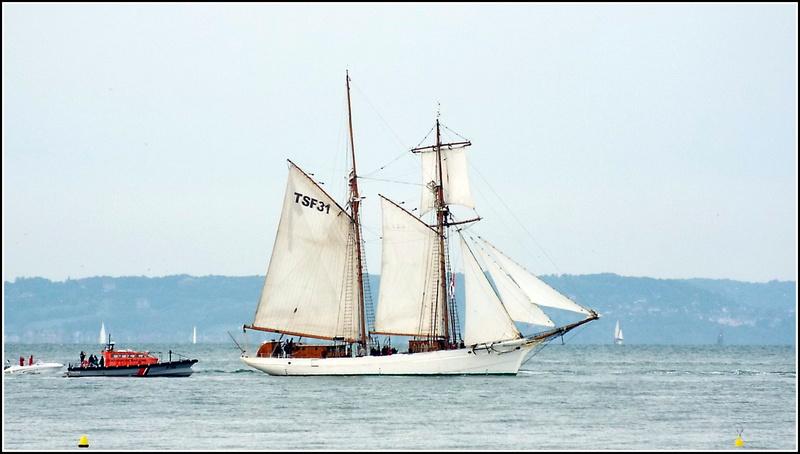 [ Marine à voile ]  Les grandes   voiles  au Havre Dscf2411