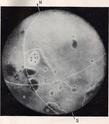 Luna-3 Lunik_11