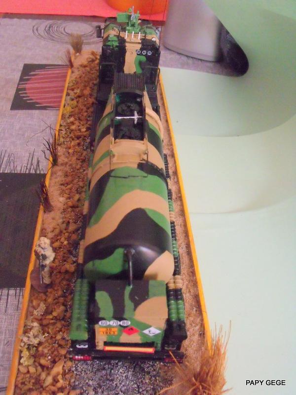 Scania CARAPACE au 1/48 Gaso - Page 2 52-dsc10