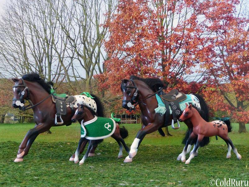Appaloosa en Vrac! (Grand Champion, mostly) P1530610