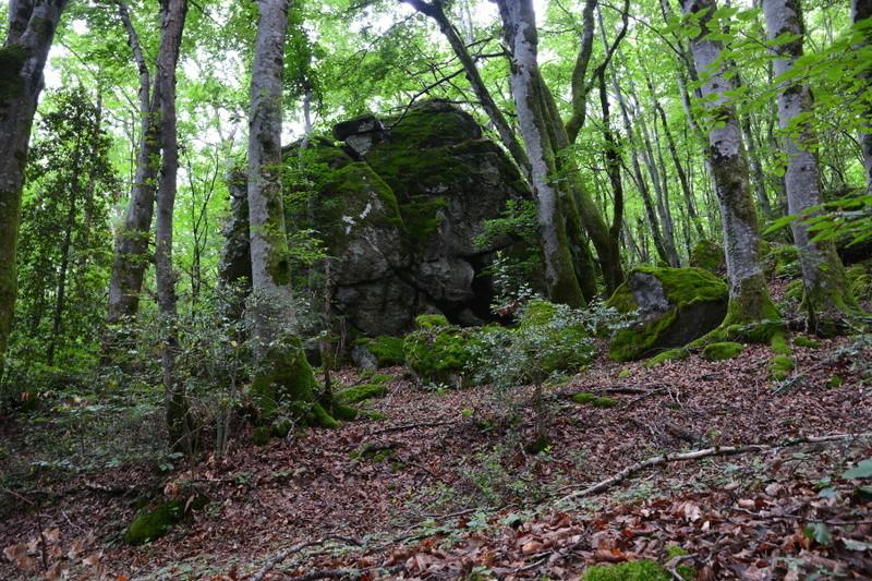 Haut lieux vibratoire Bort les orgues (Corrèze) Foreyt10
