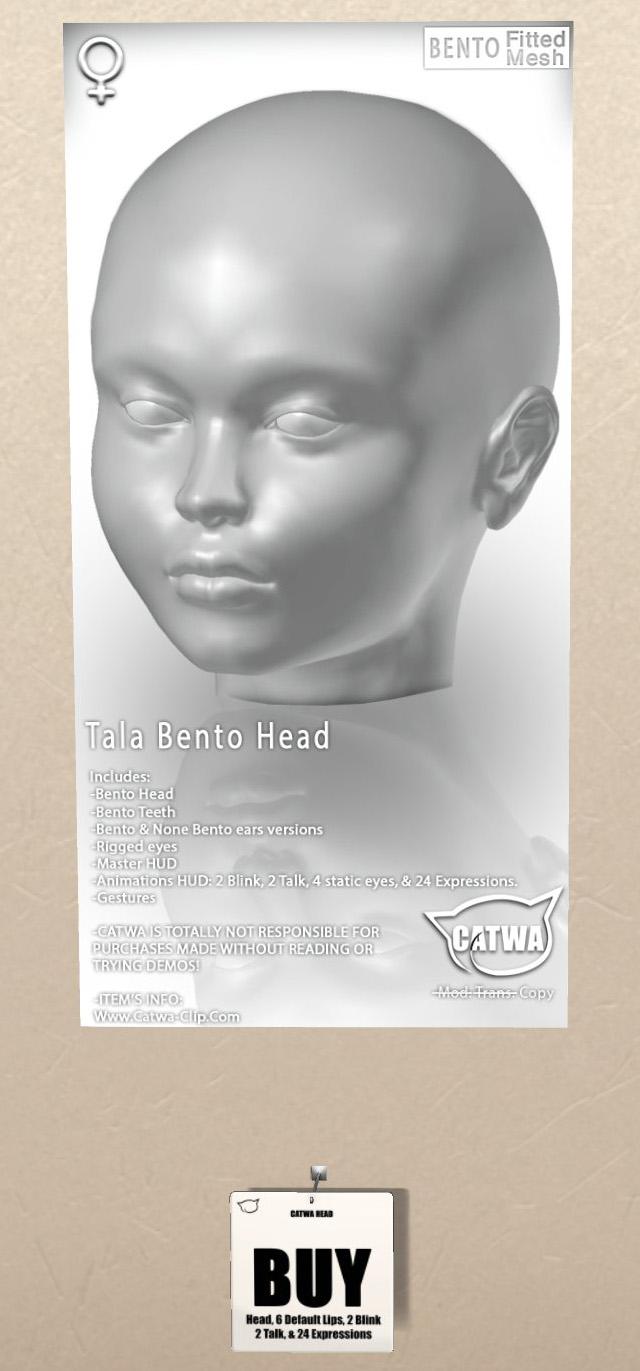 ]Mixte] Catwa - Page 2 Zzpiod10
