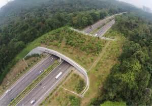 « EN IMAGES. 10 ponts et tunnels construits pour sauver les animaux » Pont_a10