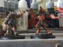 Figurines Reaper miniatures Imgp1618