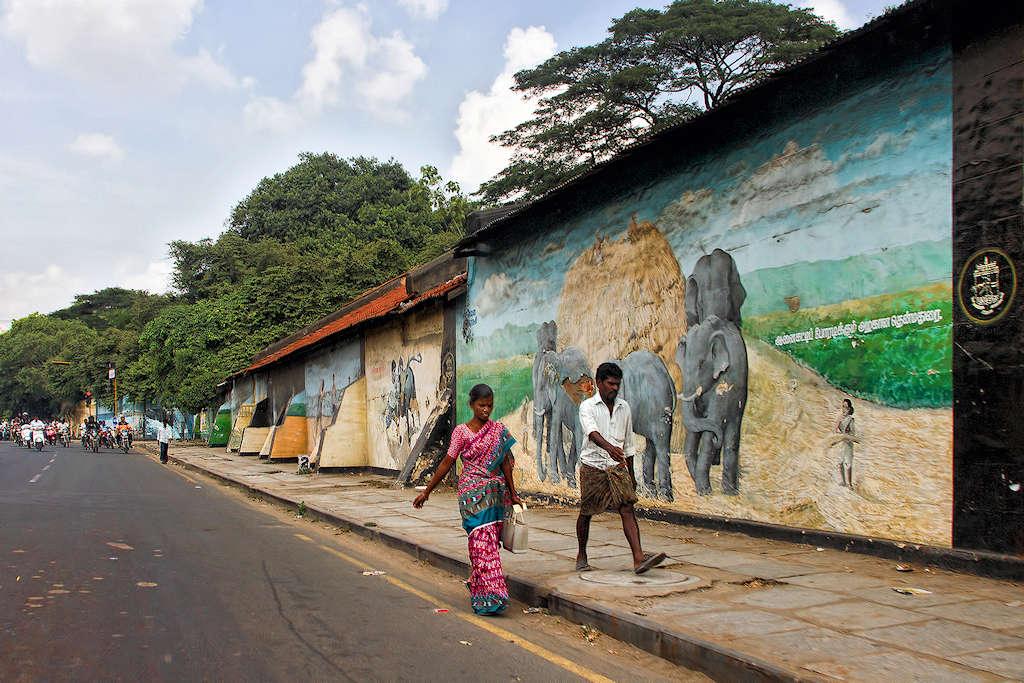 Le mur aux éléphants Img_9111