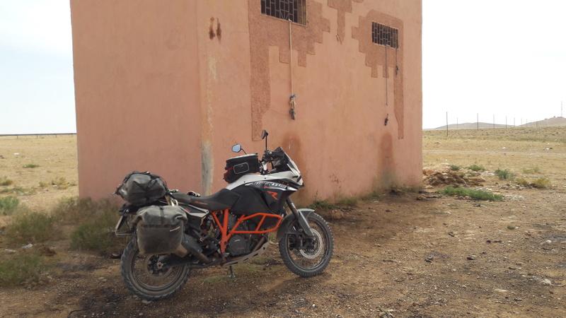 Haut Atlas de Marrakech a Figuig - Juin 2017 - Page 2 20170660