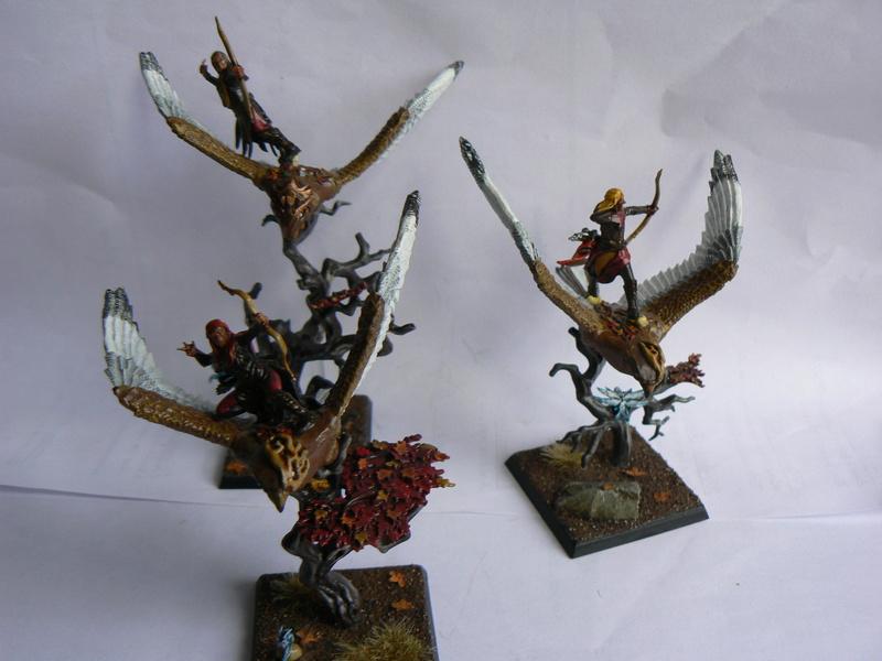 Mon Armée Elfes Sylvains - Page 3 D_d2_310