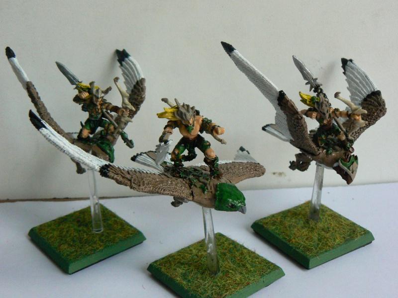 Mon Armée Elfes Sylvains - Page 3 E-2_gu10