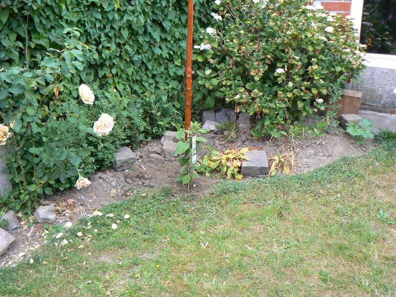 Les Jardins d'Athel Loren. P1150216