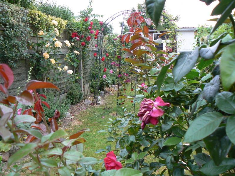 Les Jardins d'Athel Loren. P1150217