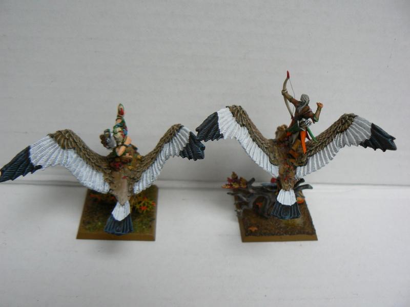 Mon Armée Elfes Sylvains - Page 3 P1150422