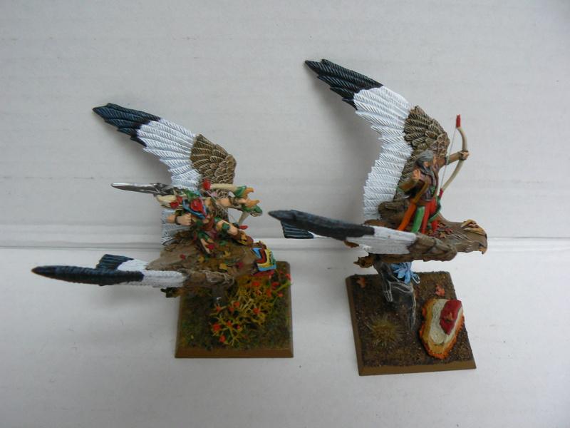 Mon Armée Elfes Sylvains - Page 3 P1150423