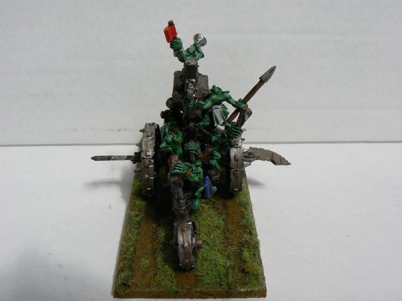 Mon armée de peaux verte. P1150448