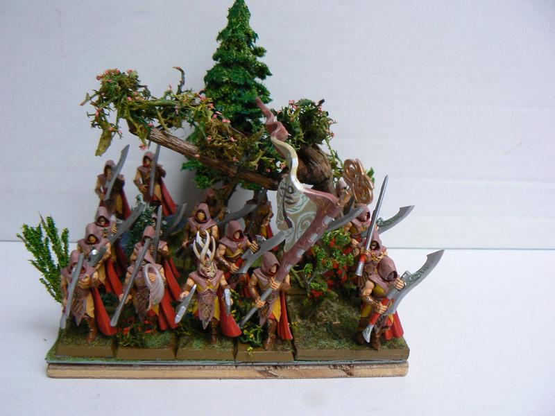 Mon Armée Elfes Sylvains - Page 3 P1150611