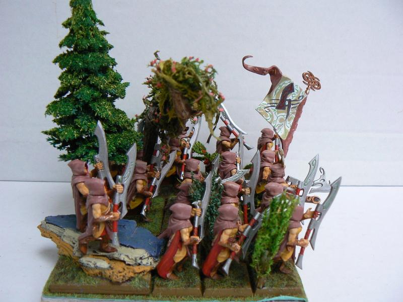 Mon Armée Elfes Sylvains - Page 3 P1150612