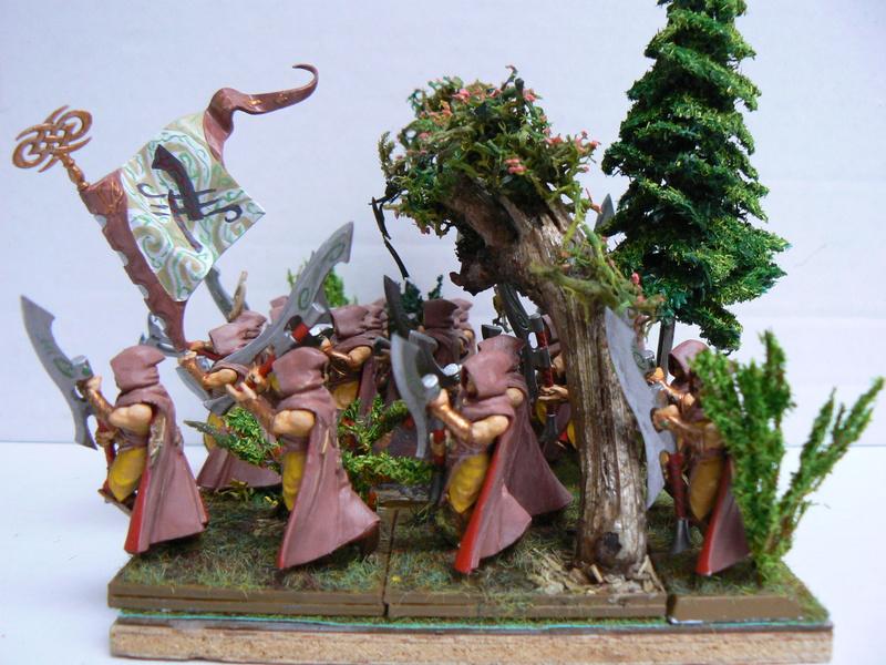 Mon Armée Elfes Sylvains - Page 3 P1150613