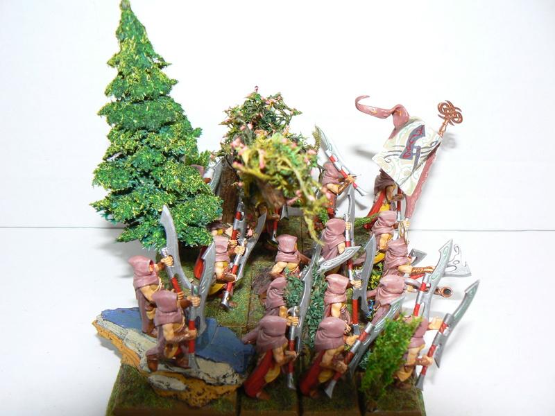 Mon Armée Elfes Sylvains - Page 3 P1150615