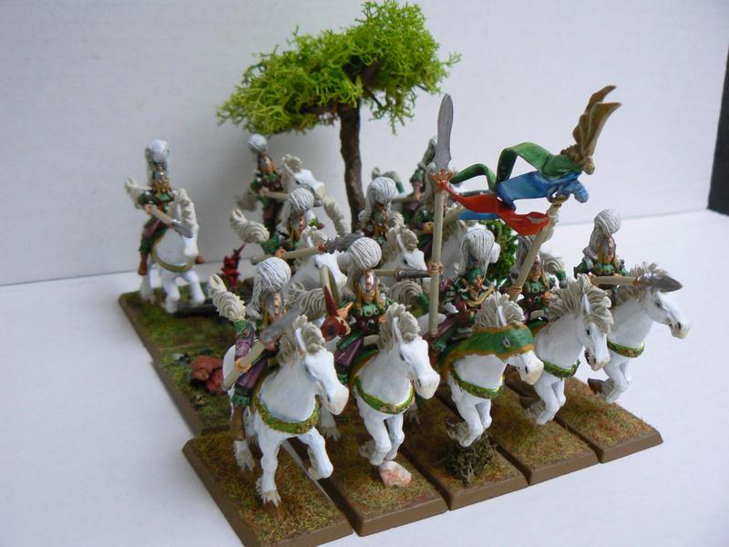 Mon Armée Elfes Sylvains - Page 3 P1150813