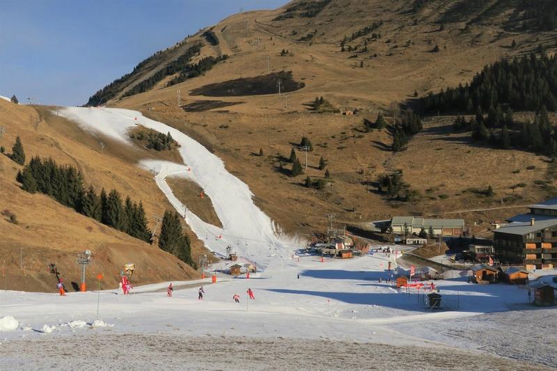 ski à Auris en Oisans 15800810