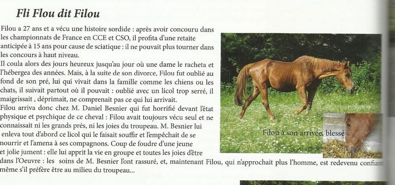 FLI FLOU dit FILOU - AA né en 1984 - accueilli en mars 2012 chez Pech Petit Nouvel11