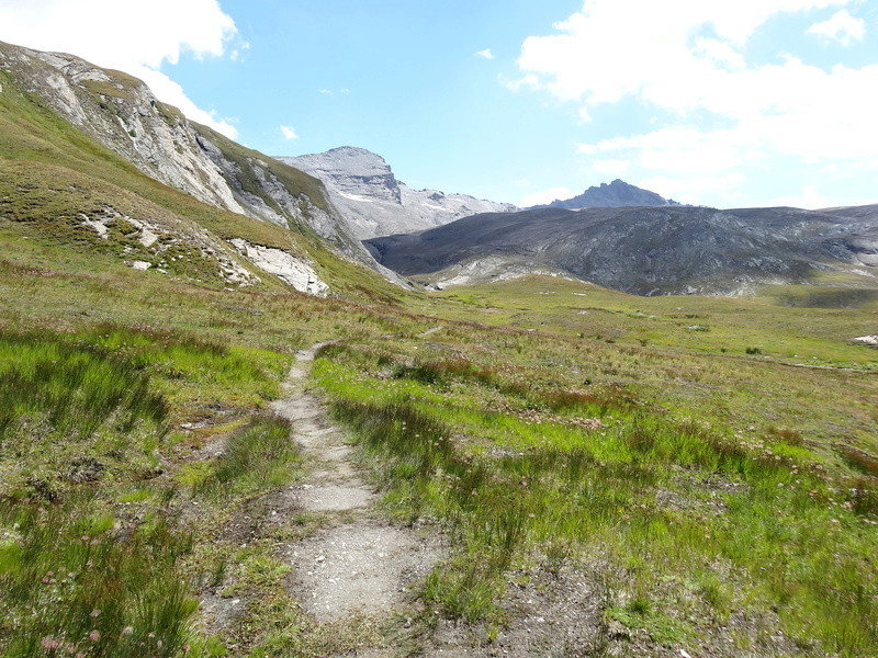 Col de l'Ouille Noire Dsc02811