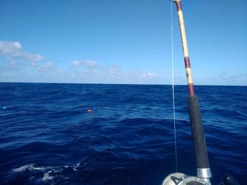 Pêche aux requins Img_2012