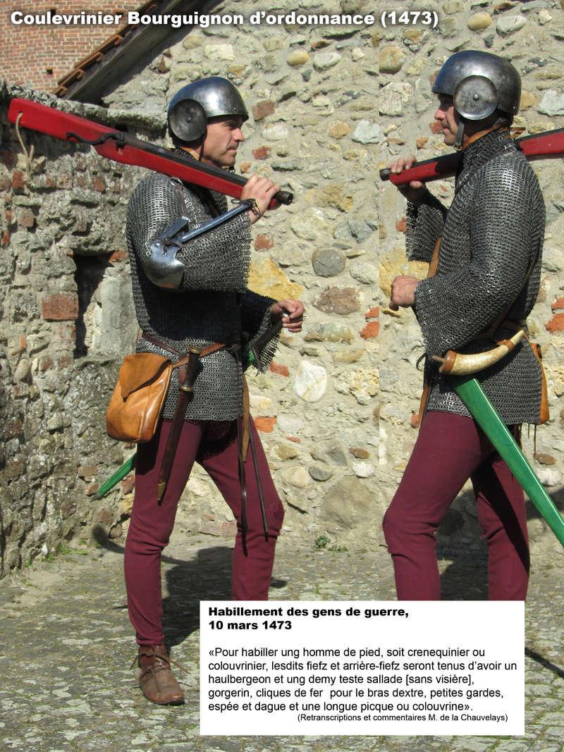 Coulevrinier bourguignon d'ordonnance 147310