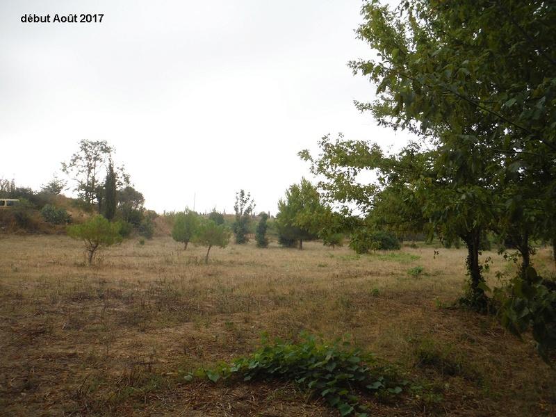 JdB de 4 hectares de pâtures dans le SUD : Avril 2019, et toujours la sécheresse... - Page 6 14013p10