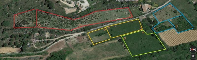 JdB de 4 hectares de pâtures dans le SUD : Avril 2019, et toujours la sécheresse... - Page 6 Predes10
