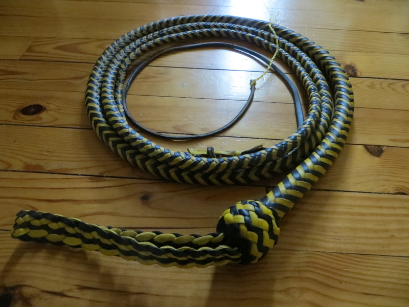 10ft black and yellow snakewhip Img_6712