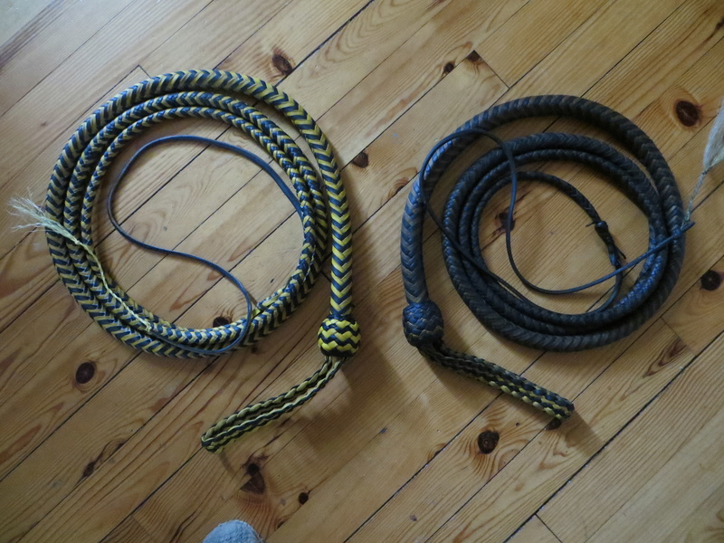 10ft black and yellow snakewhip Img_6713