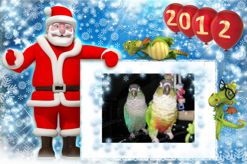 Merry Christmas and happy new year  38283010
