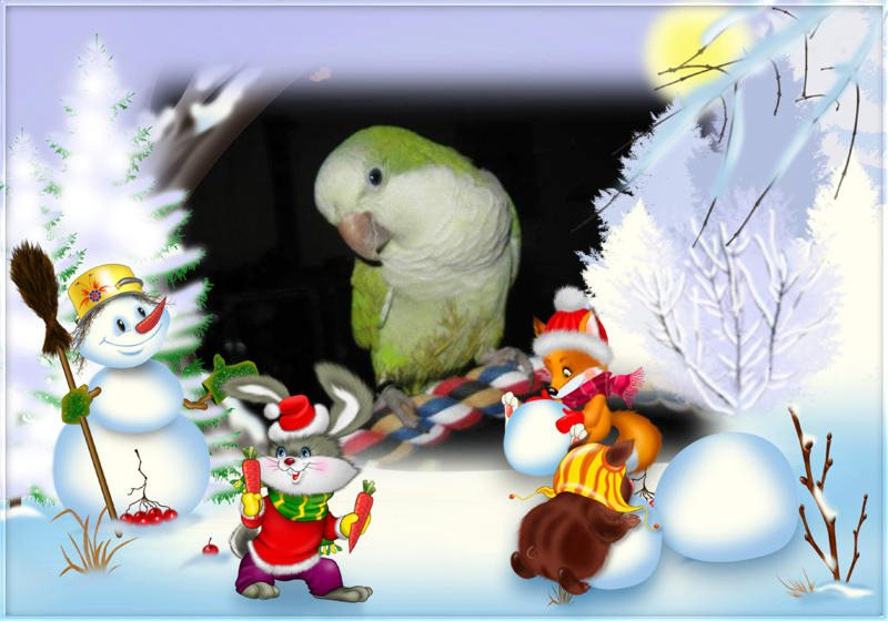 Merry Christmas and happy new year  39311810