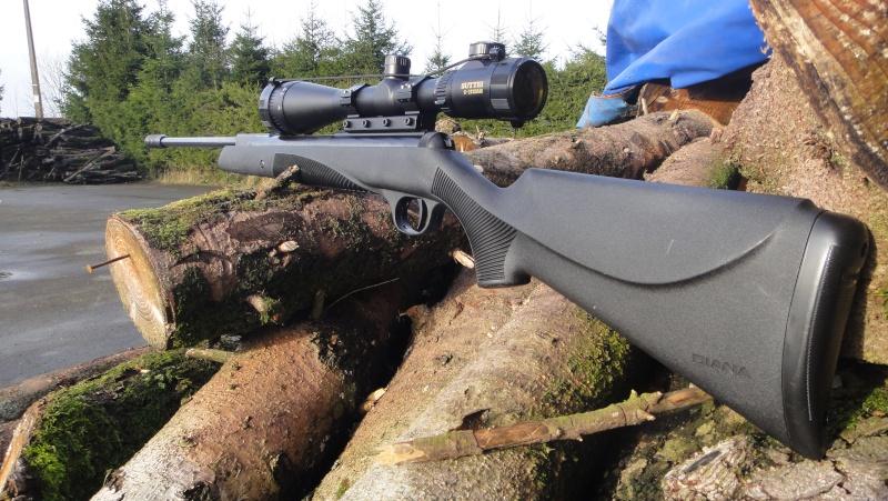 Mes armes Dsc07218