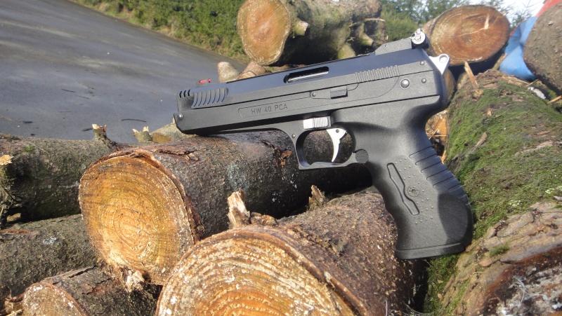 Mes armes Dsc07220