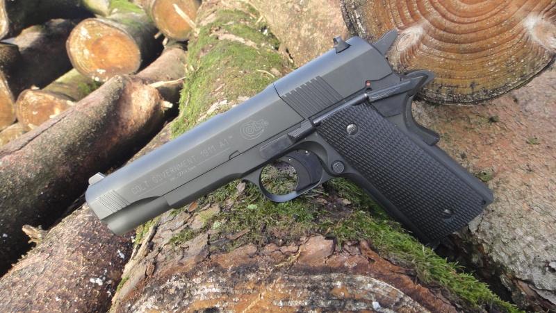 Mes armes Dsc07224