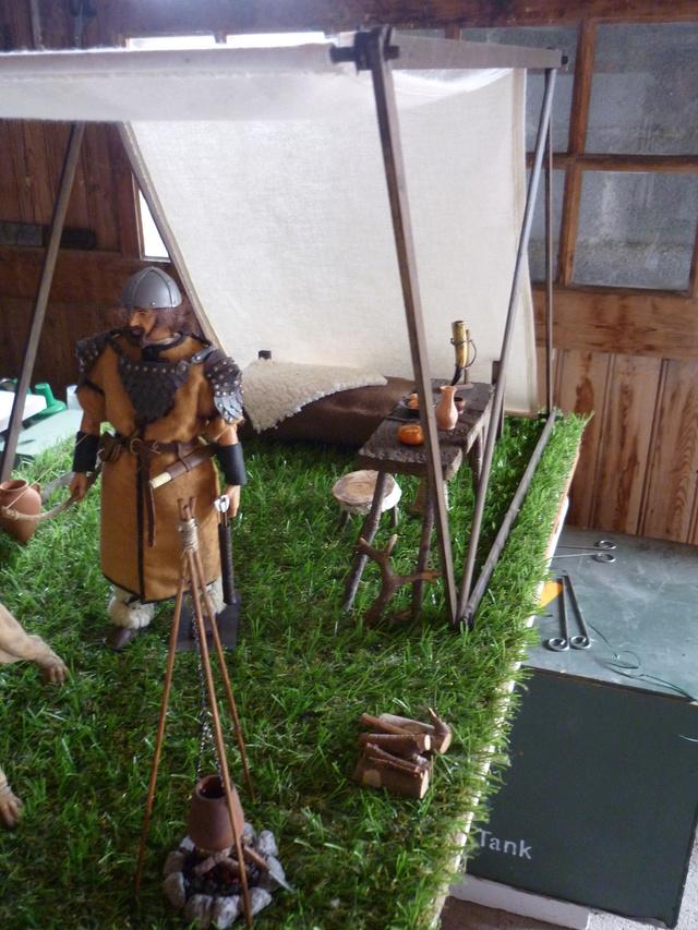 ambiance Viking P1100063