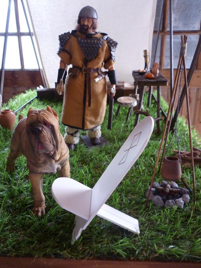 ambiance Viking P1100070