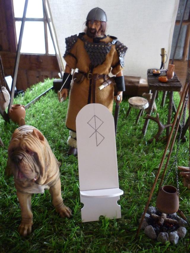 ambiance Viking P1100071