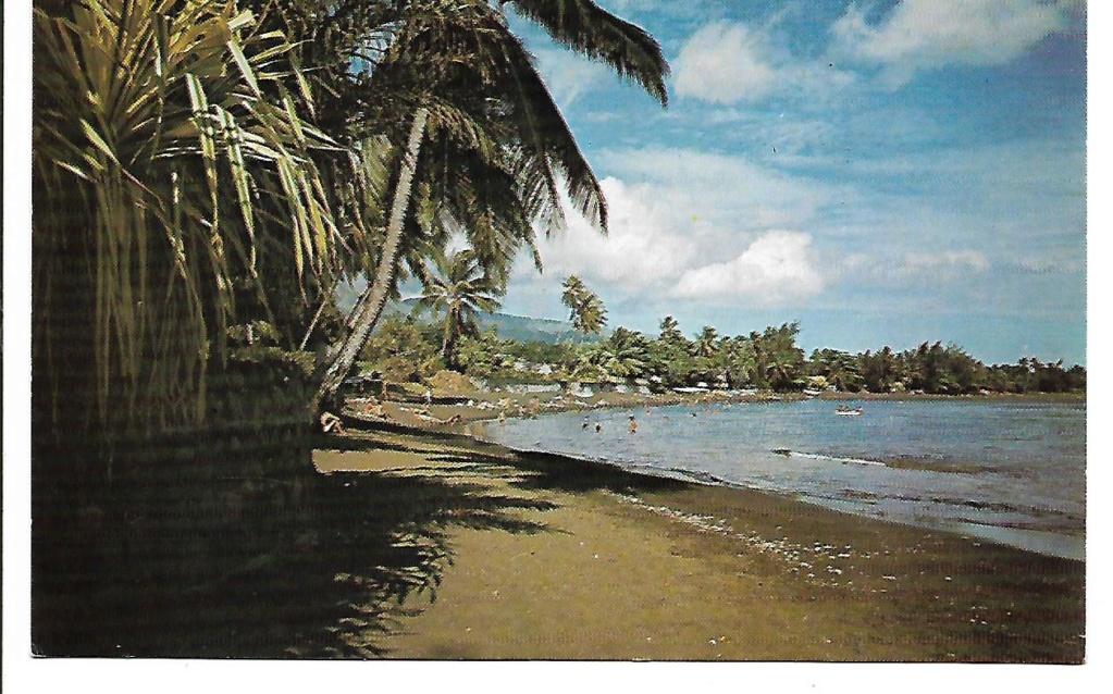 [Campagne C.E.P. - Papeete] État Major/CEP . Grd-Hotel et Taaoné - Page 3 Scan_165
