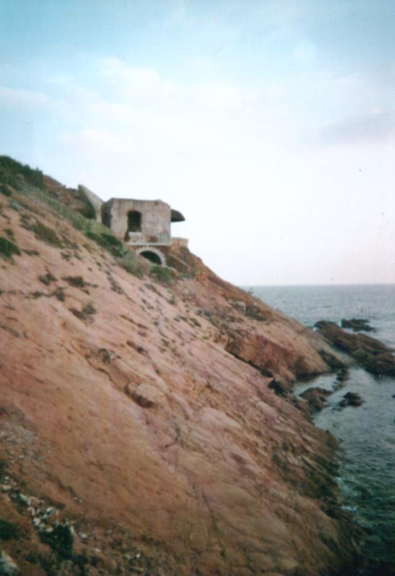 Tor 103, Pointe de Marégau (Saint Mandrier, 83) Aaj10