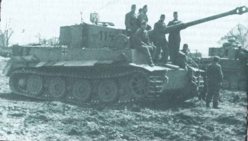 2e Armée Hongroise sur le Don - Page 2 Tigre11