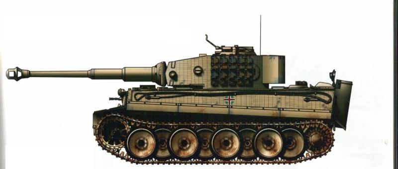 2e Armée Hongroise sur le Don - Page 2 Tigre_10