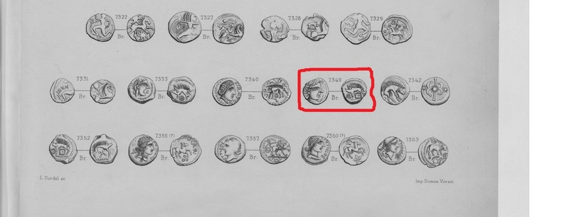 Identification bronze au sanglier a gauche Tylych10