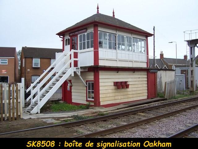 Grande-Bretagne: quelques très beaux Box Signal. ( Saxby). 11010810